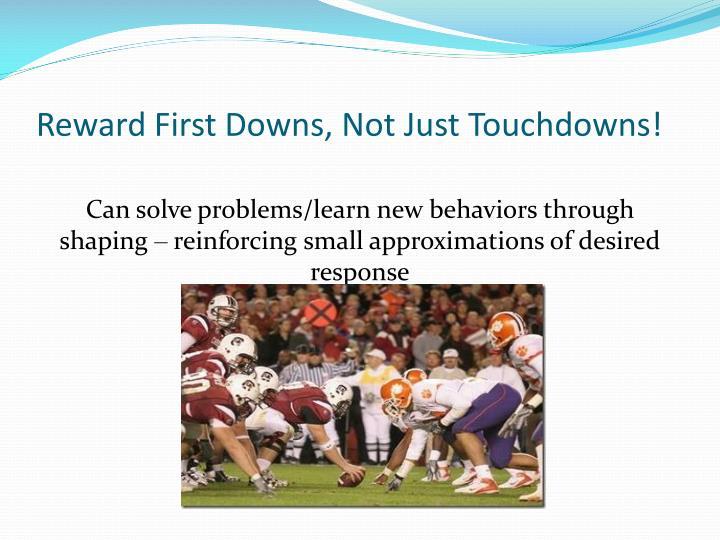 Reward First Downs, Not Just Touchdowns!