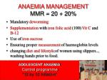 anaemia management mmr 20 20
