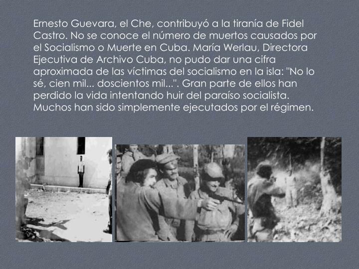"""Ernesto Guevara, el Che, contribuyó a la tiranía de Fidel Castro. No se conoce el número de muertos causados por el Socialismo o Muerte en Cuba. María Werlau, Directora Ejecutiva de Archivo Cuba, no pudo dar una cifra aproximada de las víctimas del socialismo en la isla: """"No lo sé, cien mil... doscientos mil..."""". Gran parte de ellos han perdido la vida intentando huir del paraíso socialista. Muchos han sido simplemente ejecutados por el régimen."""