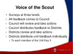 voice of the scout1