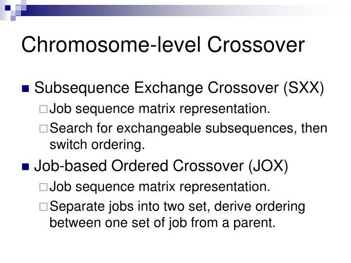 Chromosome-level Crossover