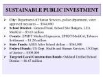 sustainable public investment