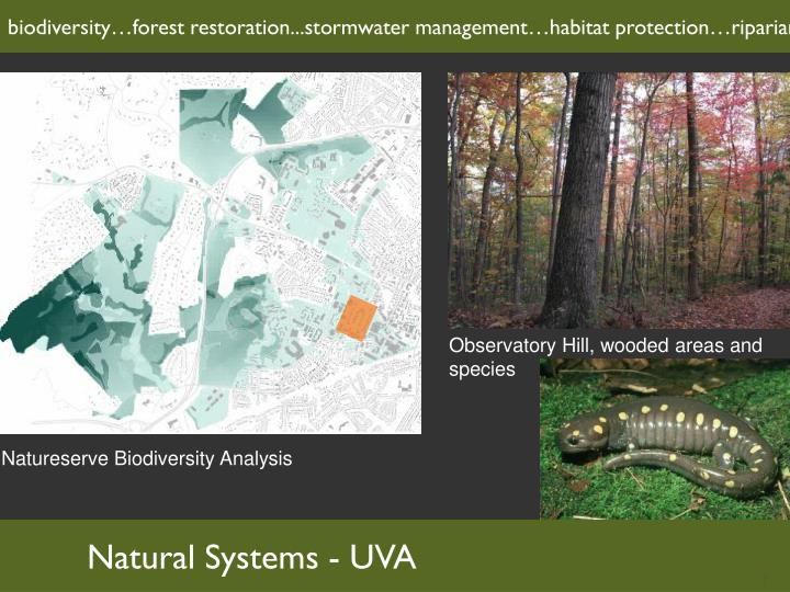 biodiversity…forest restoration...stormwater management…habitat protection…riparian systems