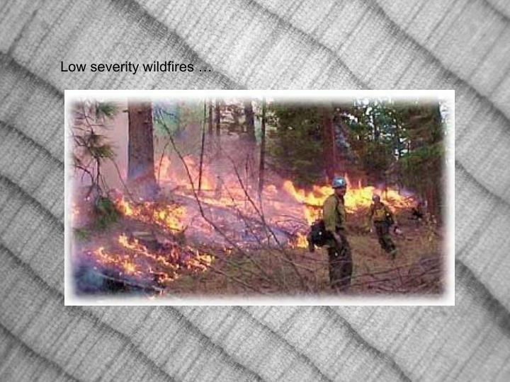 Low severity wildfires …