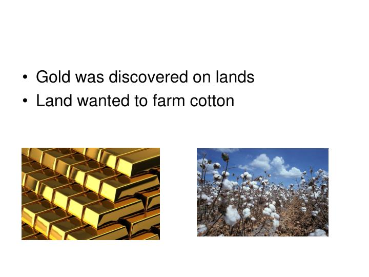 Gold was discovered on lands