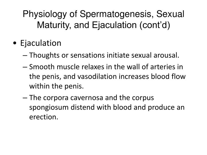 Physiology of Spermatogenesis, Sexual Maturity, and Ejaculation (cont'd)