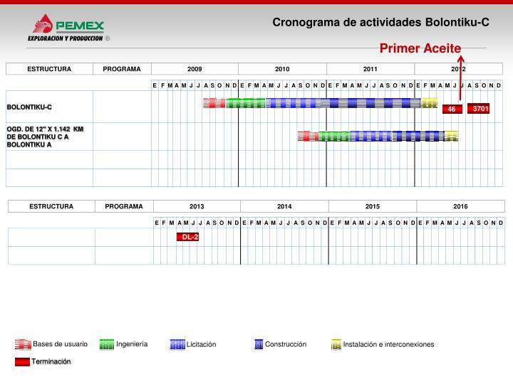 Cronograma de actividades Bolontiku-C