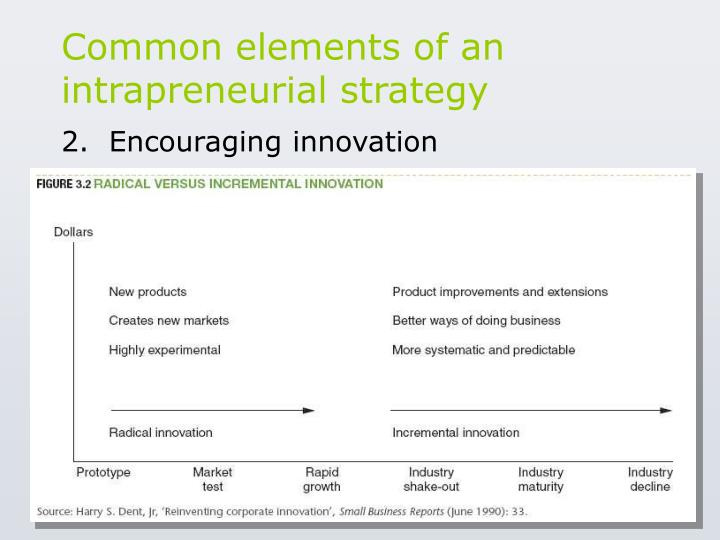 Common elements of an intrapreneurial strategy
