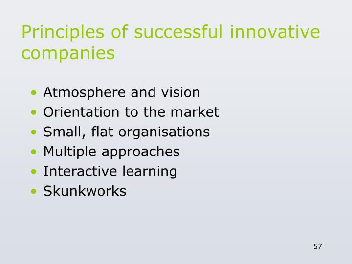 Principles of successful innovative companies