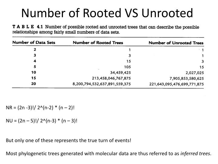 Number of Rooted VS Unrooted Trees