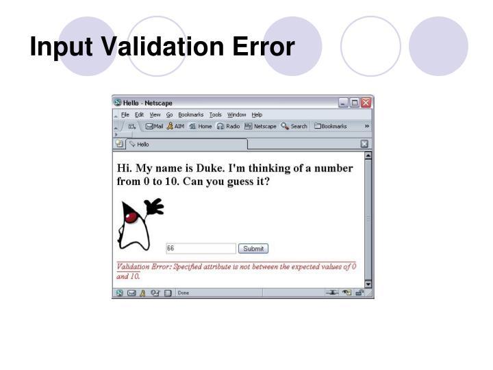 Input Validation Error
