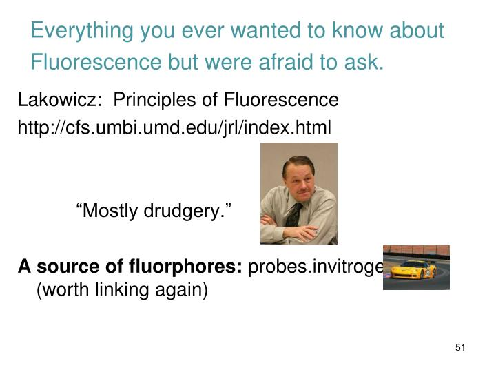 Everything you ever wanted to know about Fluorescence but were afraid to ask.