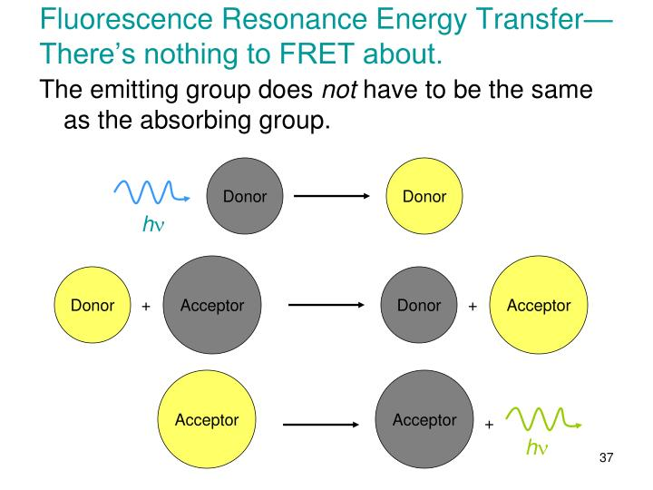 Fluorescence Resonance Energy Transfer—There's nothing to FRET about.
