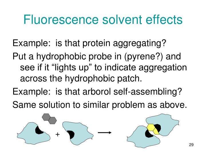 Fluorescence solvent effects