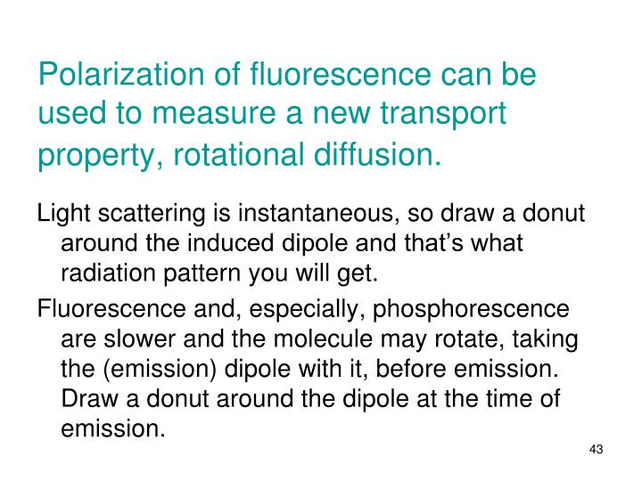 Polarization of fluorescence can be used to measure a new transport property, rotational diffusion.