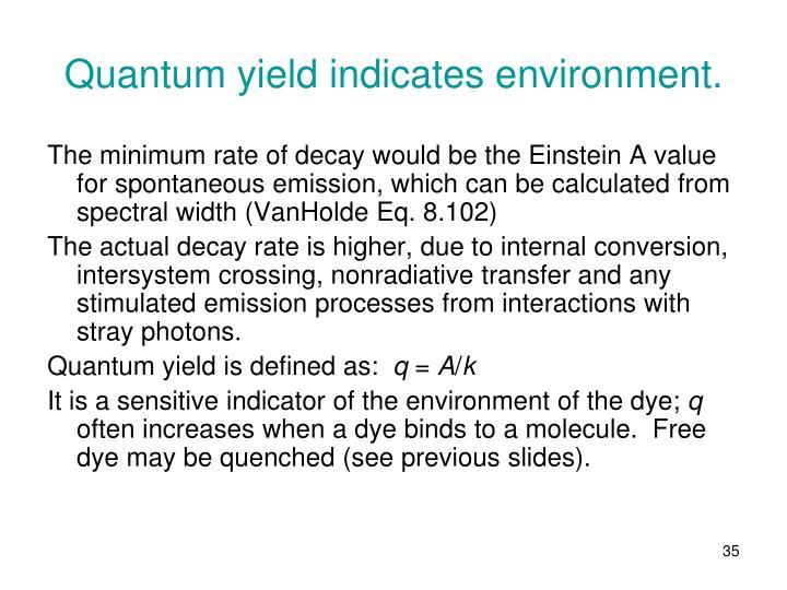 Quantum yield indicates environment.