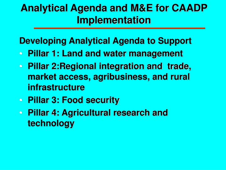 Analytical Agenda and M&E for CAADP Implementation
