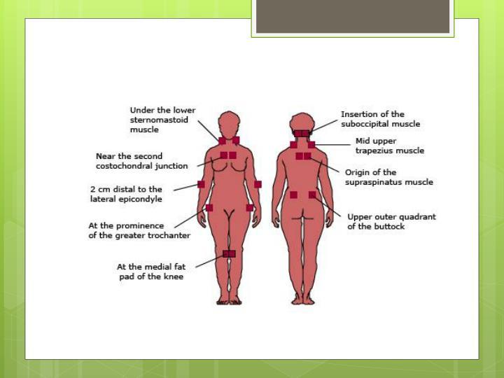 Musculoskeletal Exam