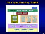 file type hierarchy of miem