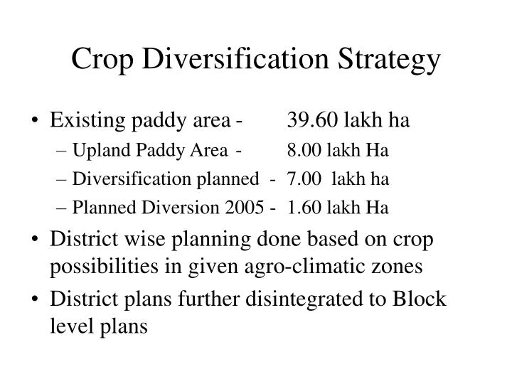 Crop Diversification Strategy