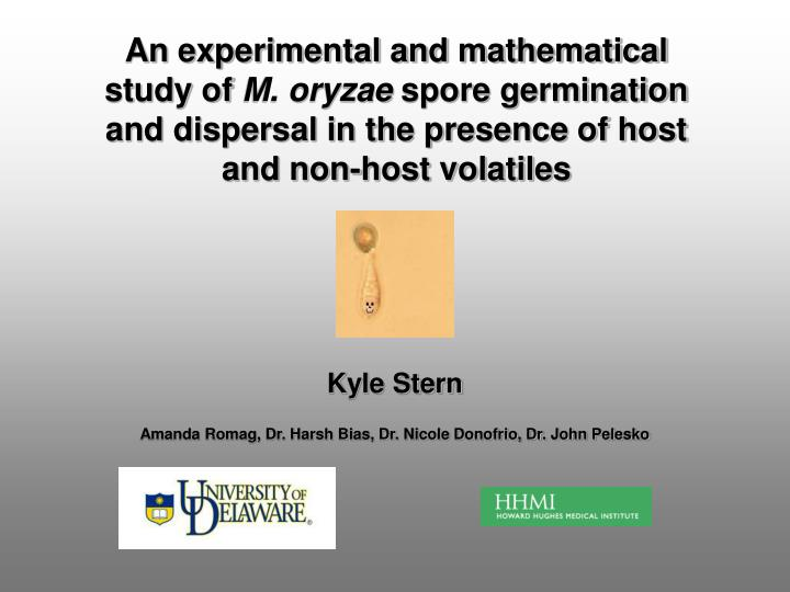 An experimental and mathematical study of