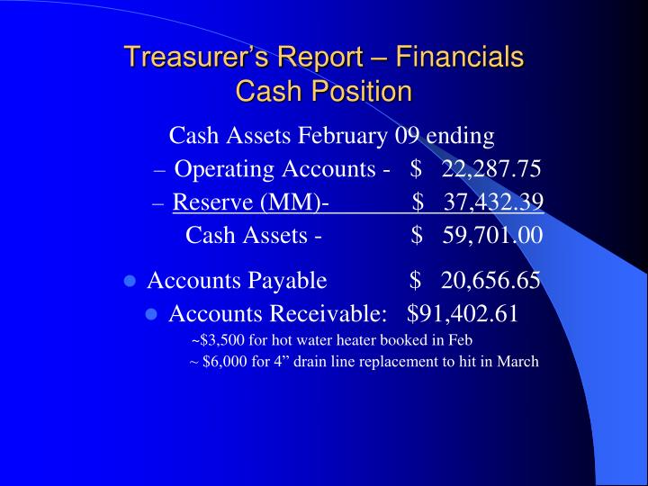 Treasurer's Report – Financials