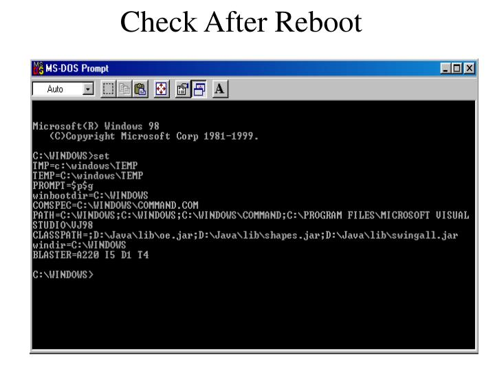 Check After Reboot