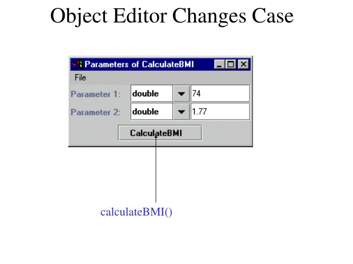 Object Editor Changes Case