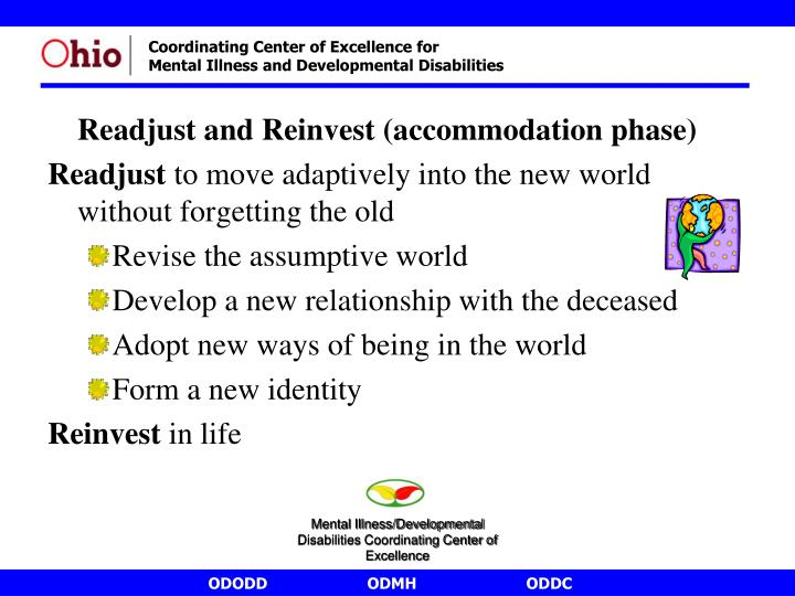Readjust and Reinvest (accommodation phase)