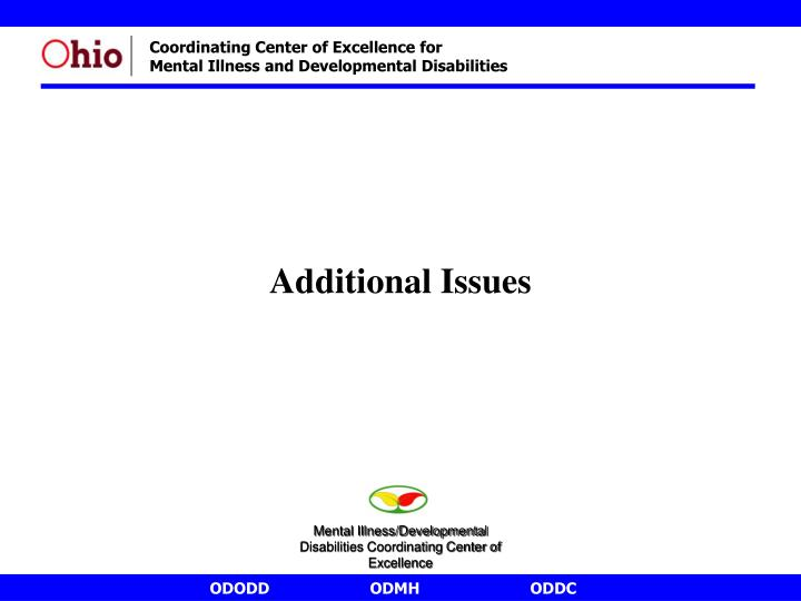 Additional Issues