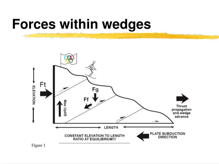 Forces within wedges