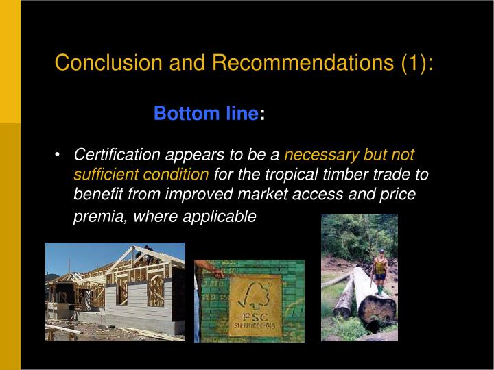 Conclusion and Recommendations (1):