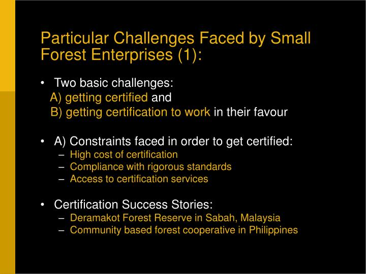 Particular Challenges Faced by Small Forest Enterprises (1):