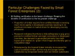 particular challenges faced by small forest enterprises 2