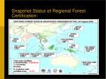snapshot status of regional forest certification