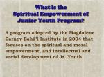 what is the spiritual empowerment of junior youth program