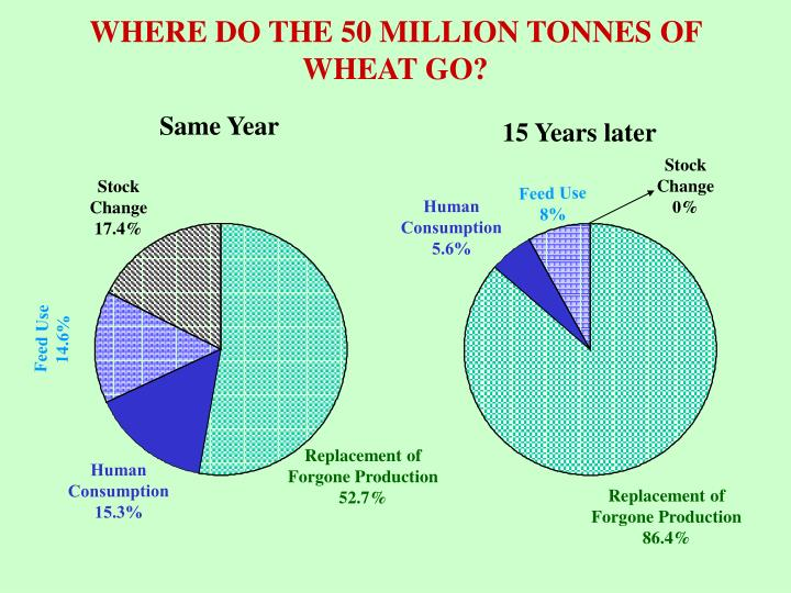 WHERE DO THE 50 MILLION TONNES OF WHEAT GO?
