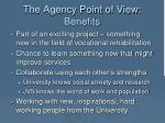 the agency point of view benefits