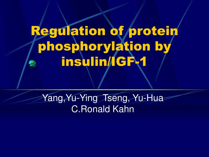 Regulation of protein phosphorylation by insulin igf 1