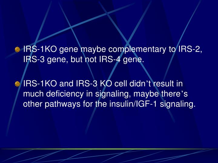 IRS-1KO gene maybe complementary to IRS-2, IRS-3 gene, but not IRS-4 gene.