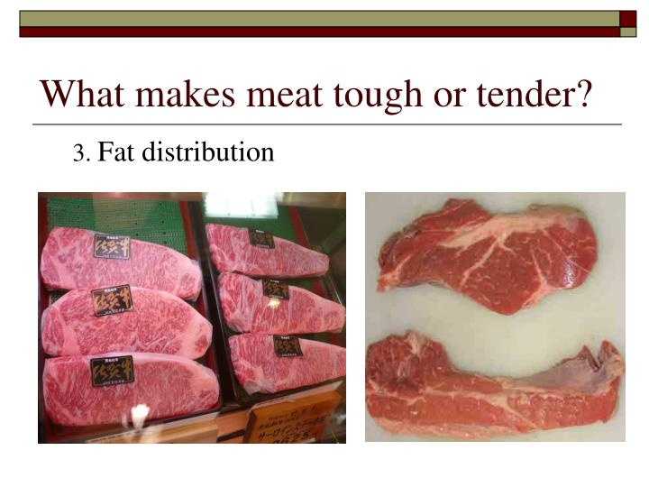 What makes meat tough or tender?