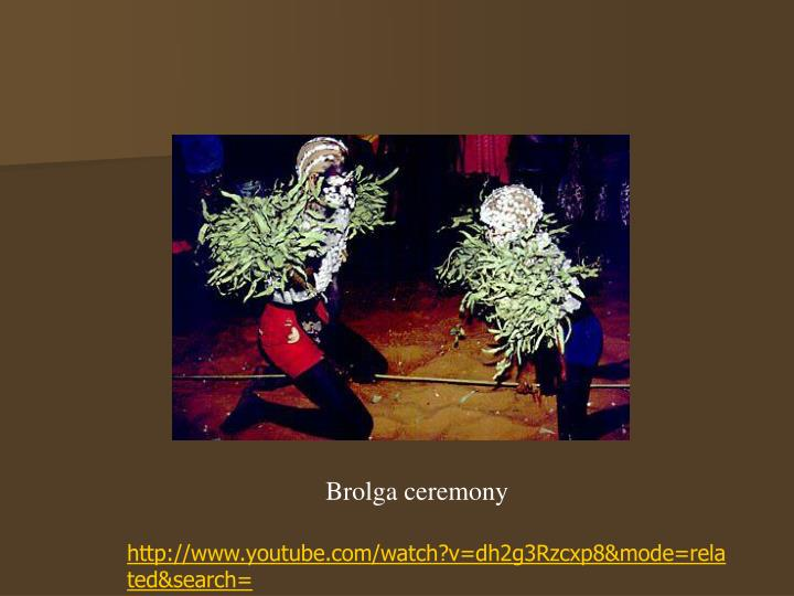 Brolga ceremony
