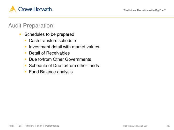 Audit Preparation: