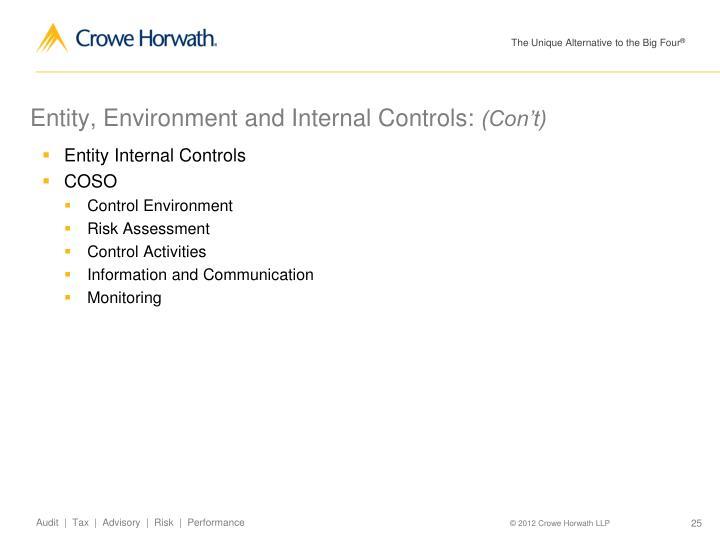 Entity, Environment and Internal Controls:
