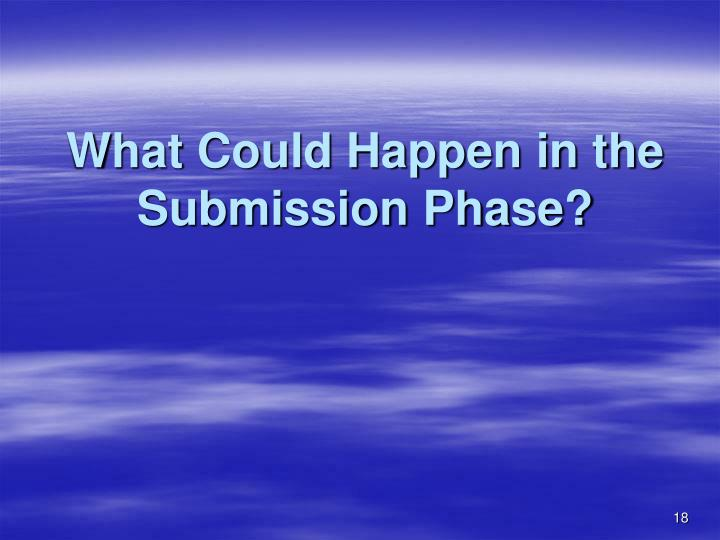 What Could Happen in the Submission Phase?