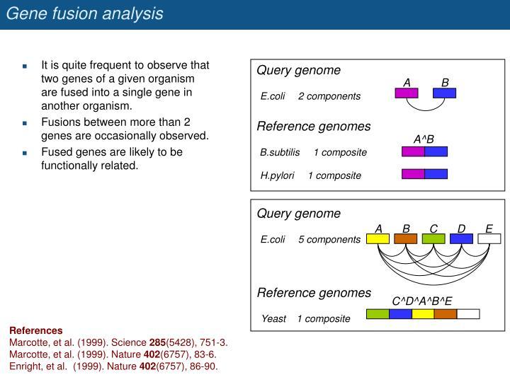 Gene fusion analysis
