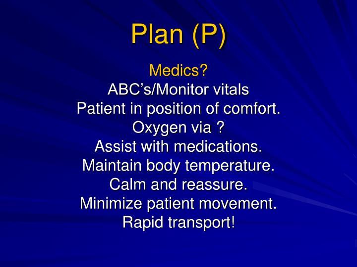 Plan (P)