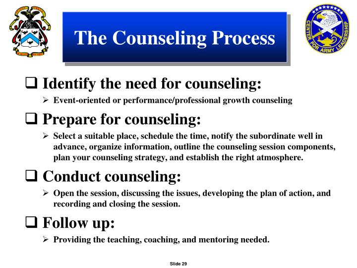 The Counseling Process