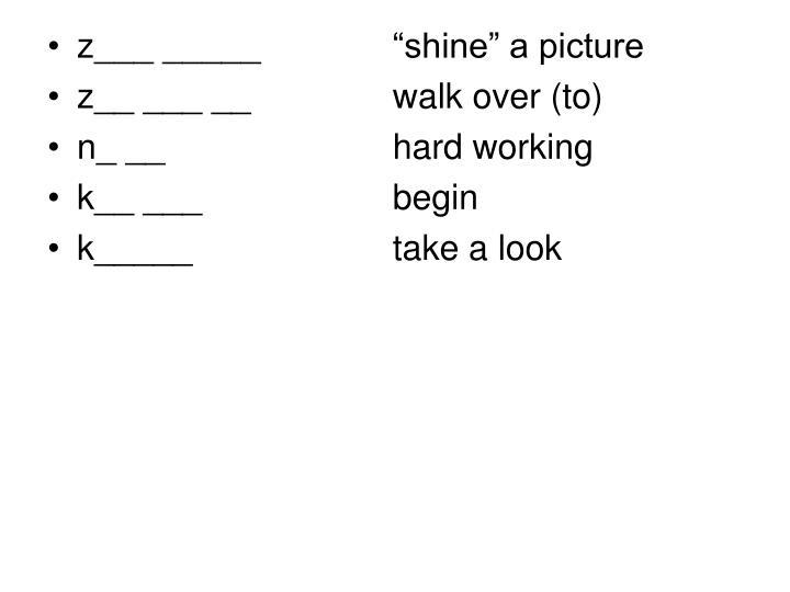 """z___ _____   """"shine"""" a picture"""