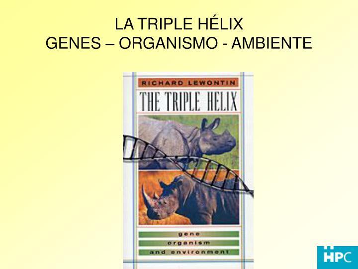 LA TRIPLE HÉLIX